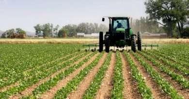 terreno agricolo imu