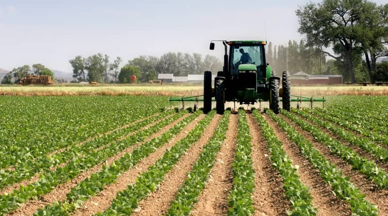 IMU, esenzione per i terreni agricoli